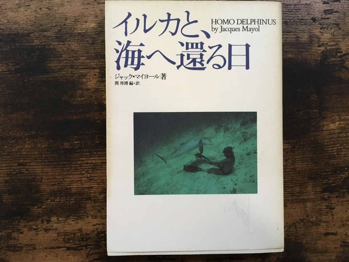 f:id:omusubi_korokoro:20201102144003j:plain