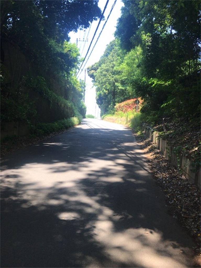 f:id:omuyakisoba:20170529183414j:image
