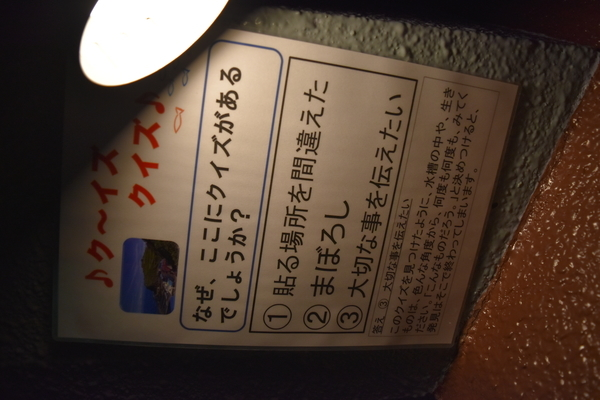 f:id:on-yasuken:20210131153939j:plain