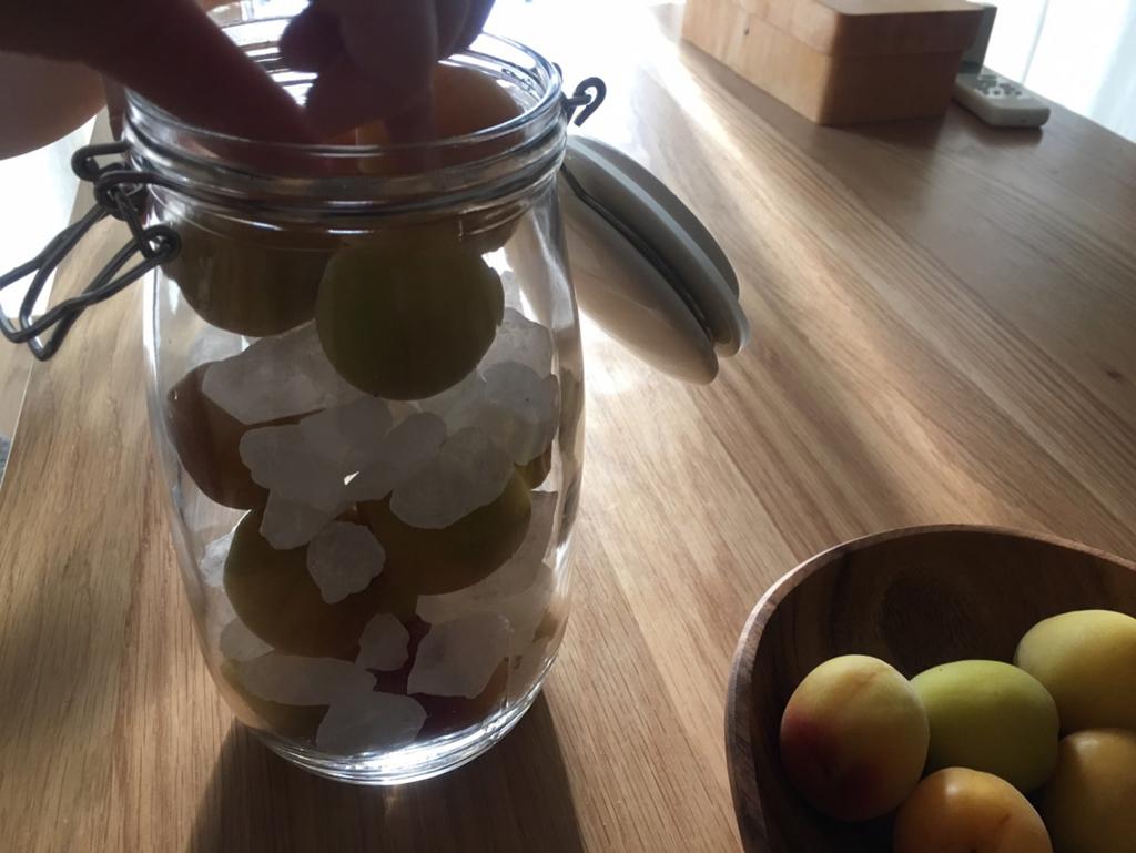 梅と氷砂糖を詰める