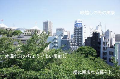 f:id:ondesign_blog01:20120617191346j:image