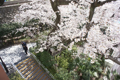 f:id:ondesign_blog01:20120617194342j:image