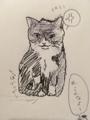 [猫][絵]