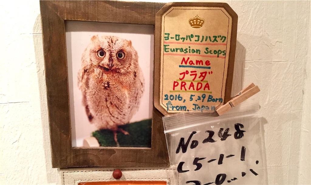 f:id:oni-gawara:20170324164920j:plain
