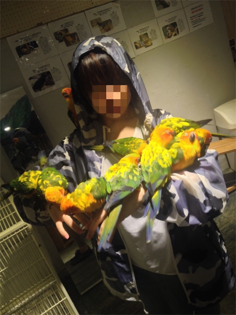 f:id:oni-gawara:20170324165442j:plain