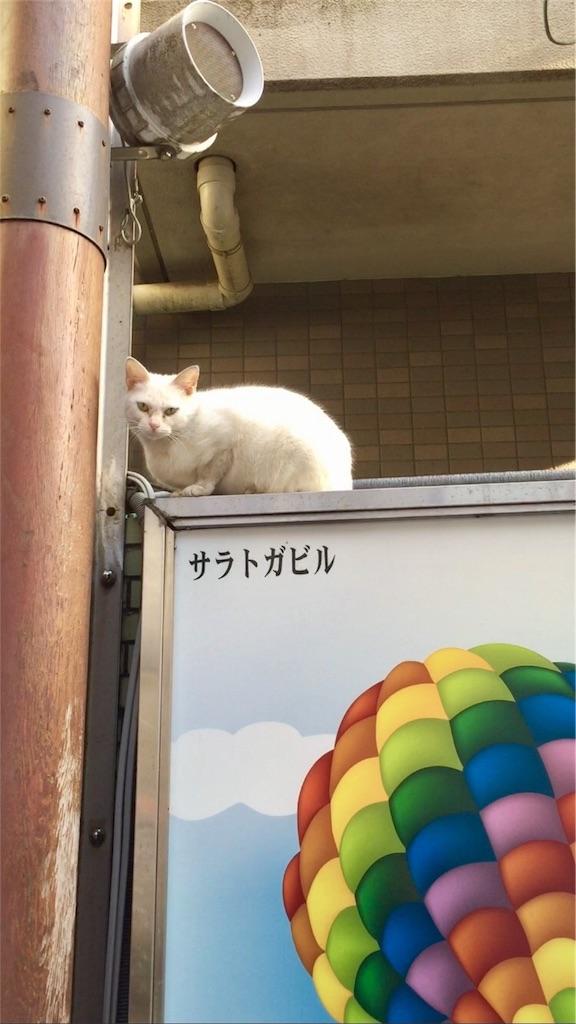 f:id:oni-gawara:20170410092604j:plain