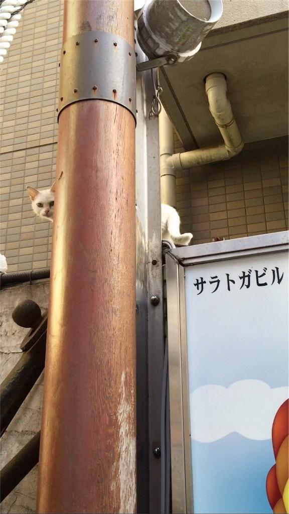 f:id:oni-gawara:20170410092609j:plain