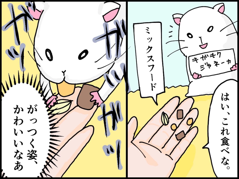 f:id:onigiri00onigiri:20200515170616j:image