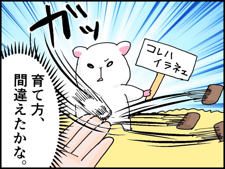 f:id:onigiri00onigiri:20200515170625j:image