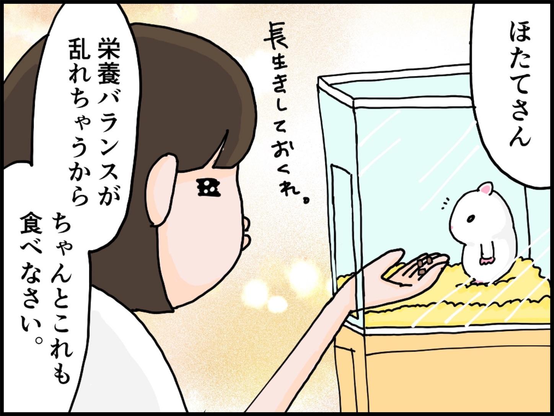f:id:onigiri00onigiri:20200515170635j:image