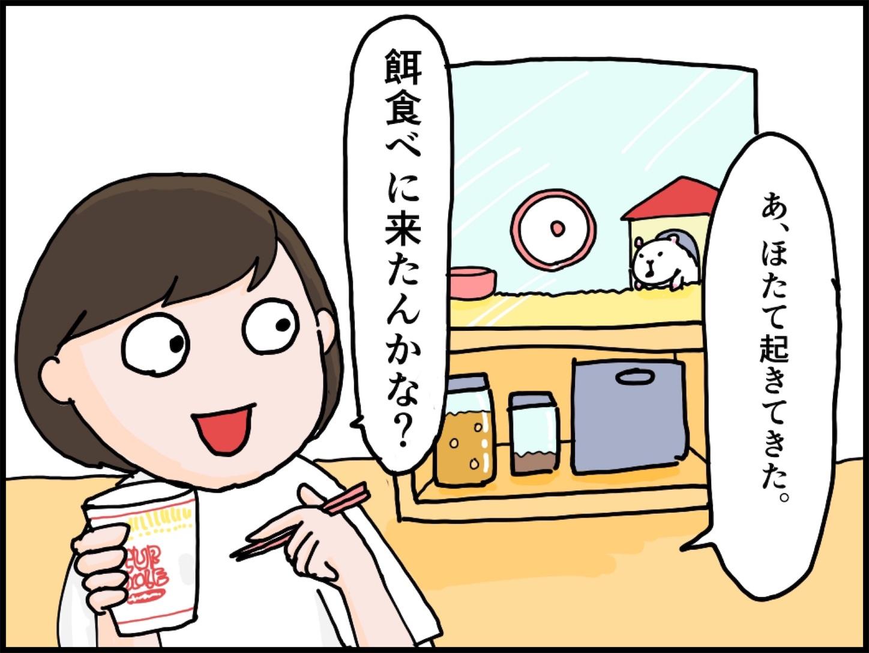 f:id:onigiri00onigiri:20200515170640j:image