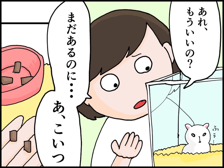 f:id:onigiri00onigiri:20200515171103j:image