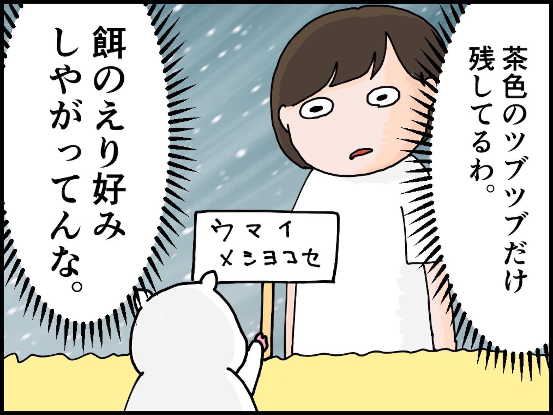 f:id:onigiri00onigiri:20200515171111j:image
