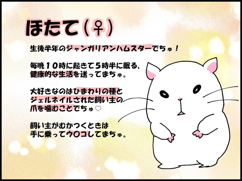 f:id:onigiri00onigiri:20200515171203j:image