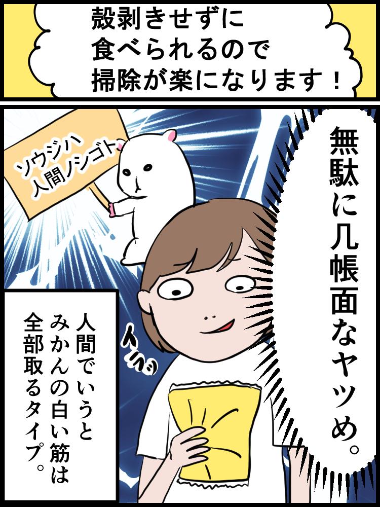 f:id:onigiri00onigiri:20200524140956j:plain
