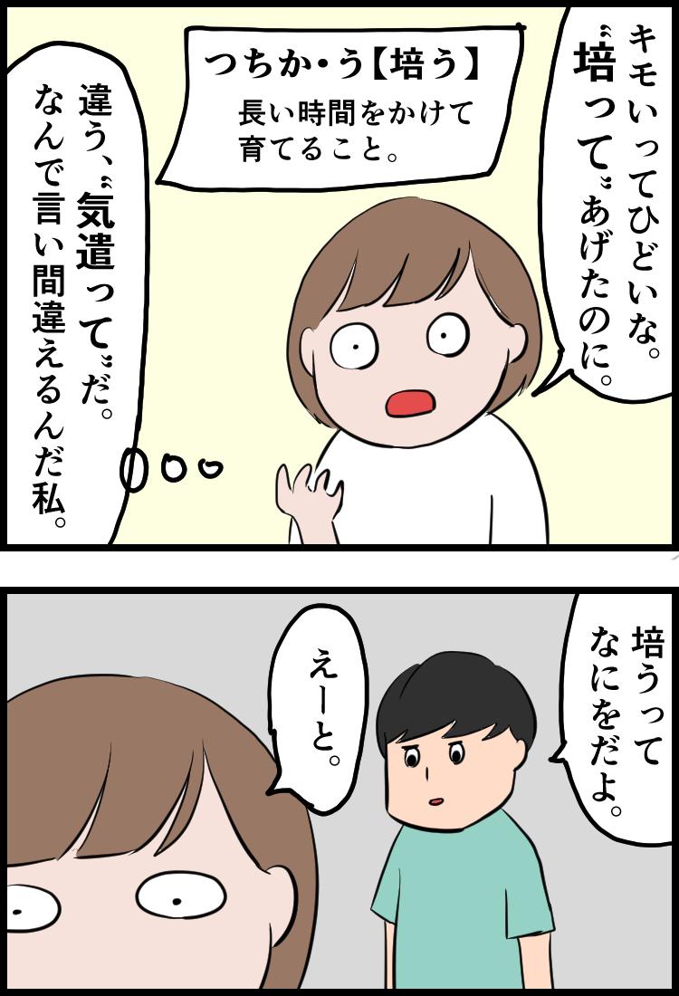 f:id:onigiri00onigiri:20200621150619j:plain