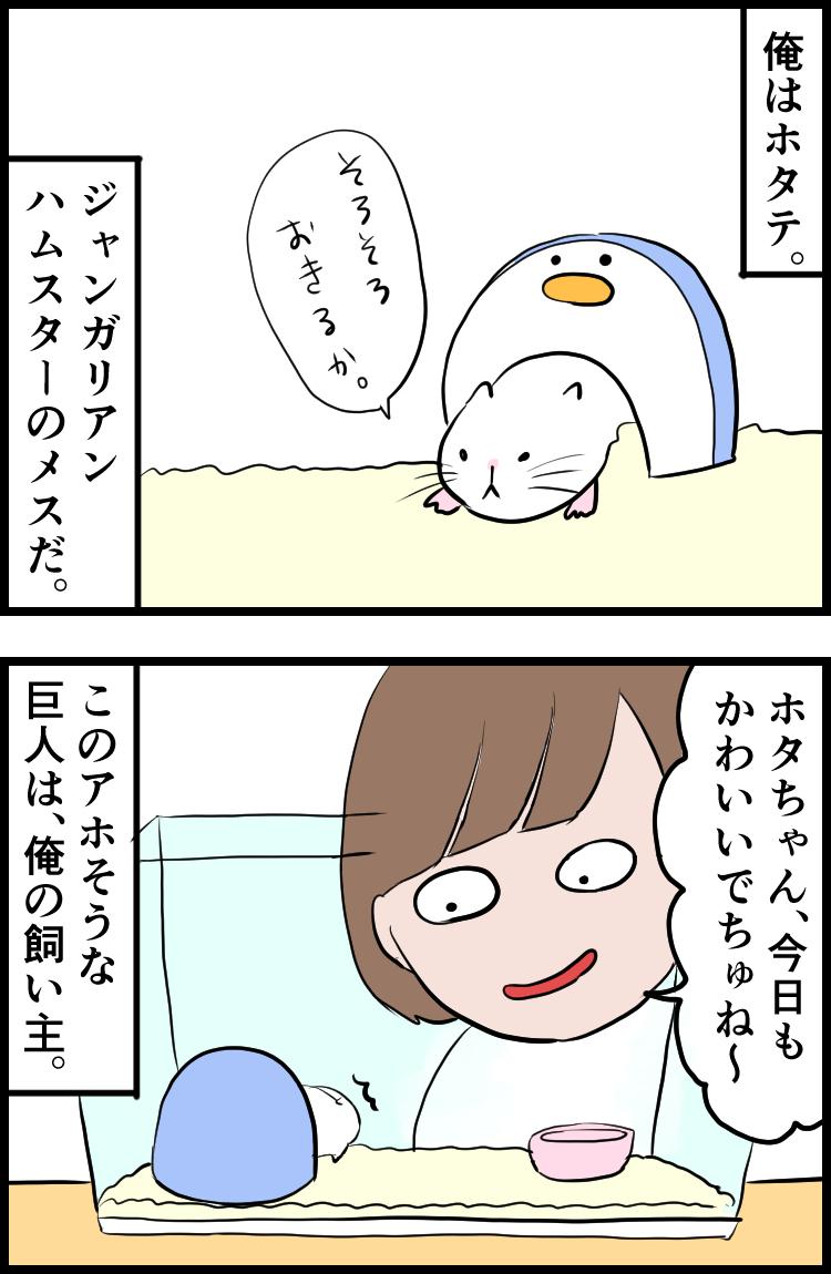 f:id:onigiri00onigiri:20200710165727j:plain