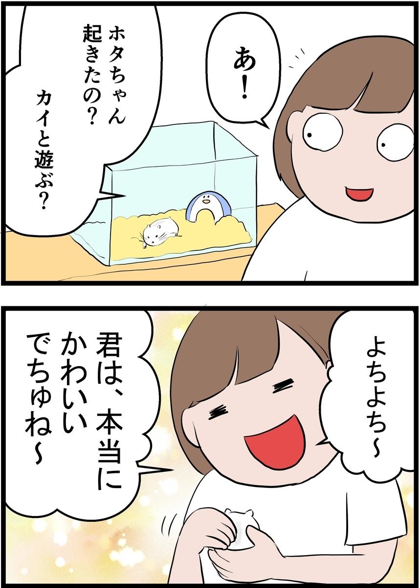 f:id:onigiri00onigiri:20200902192447j:plain