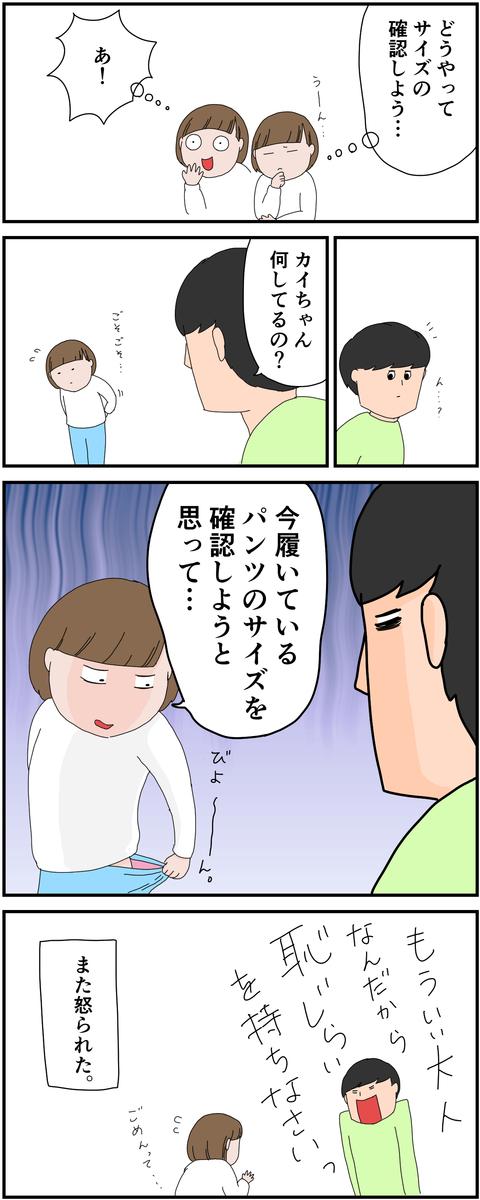 f:id:onigiri00onigiri:20210310135410j:plain