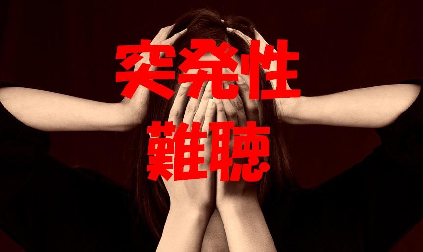 f:id:onigiri777:20171107153903j:plain