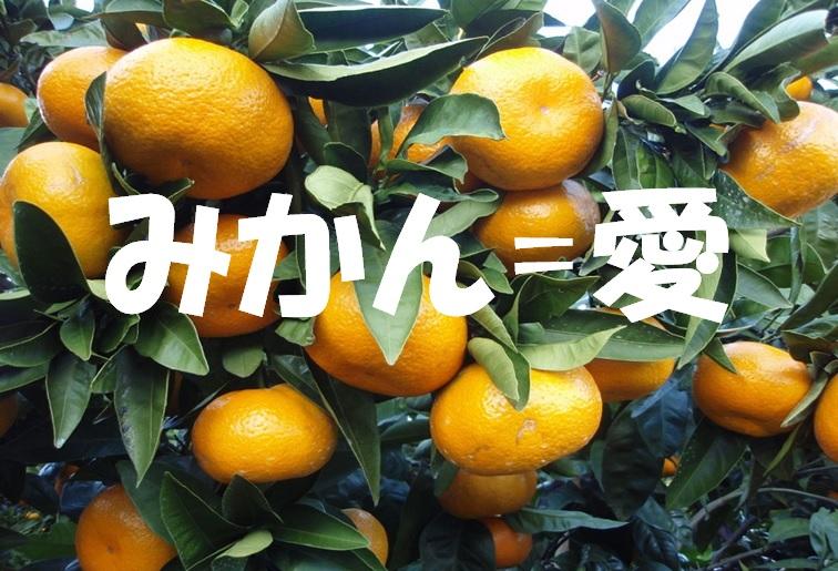f:id:onigiri777:20180111170854j:plain