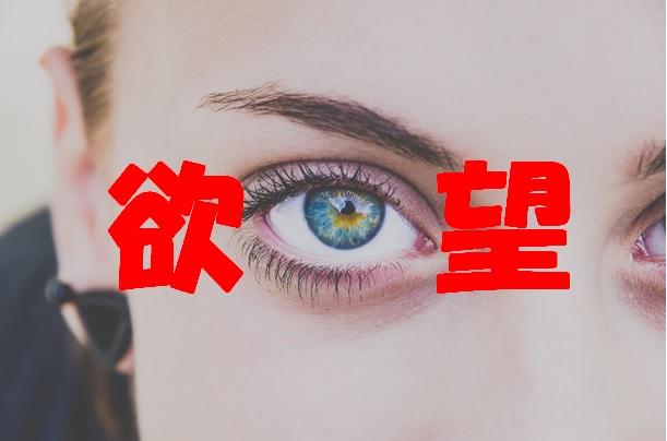 f:id:onigiri777:20180117092207j:plain
