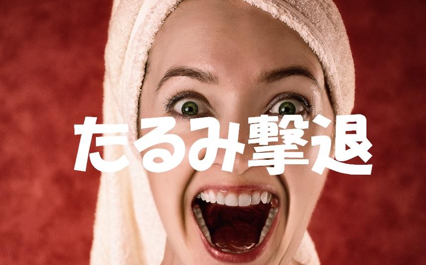 f:id:onigiri777:20180126162052j:plain