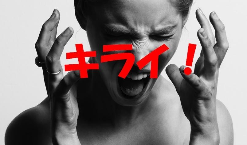 f:id:onigiri777:20180221104023j:plain