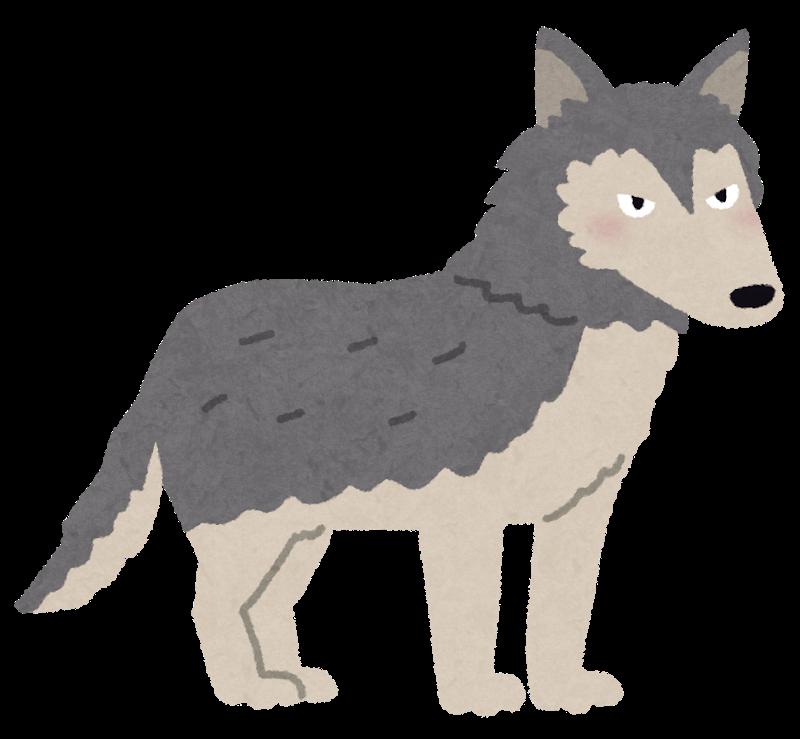 エゾオオカミ(イメージ)