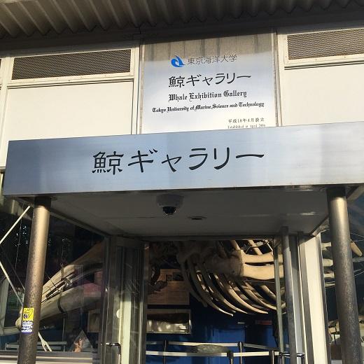 f:id:onikichikiFPN:20171103204148j:plain