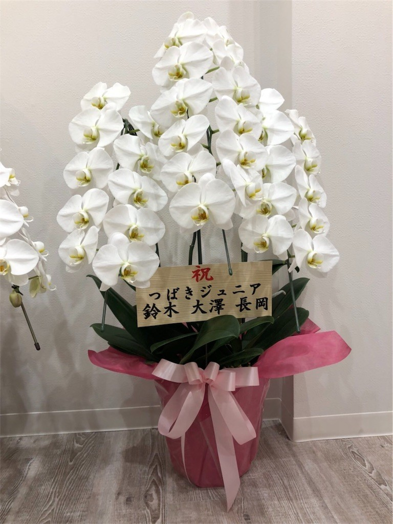 f:id:onimane:20180914102857j:image