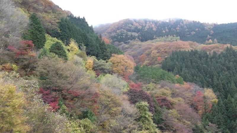 f:id:onimurateizankai:20121111130116j:image