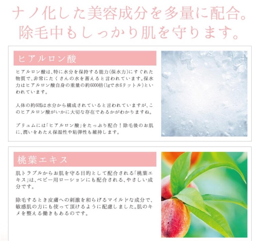 f:id:oninokonoko:20170211013045j:image