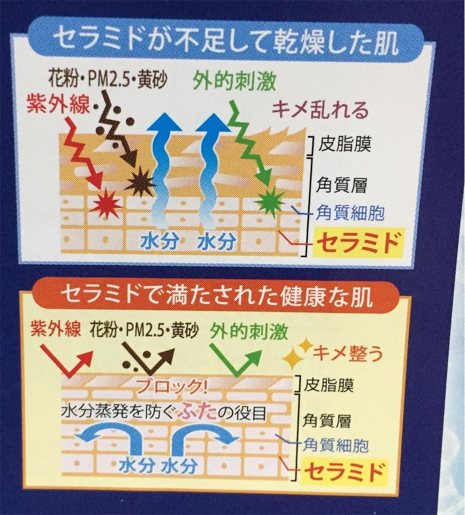 f:id:oninokonoko:20170409212457j:image