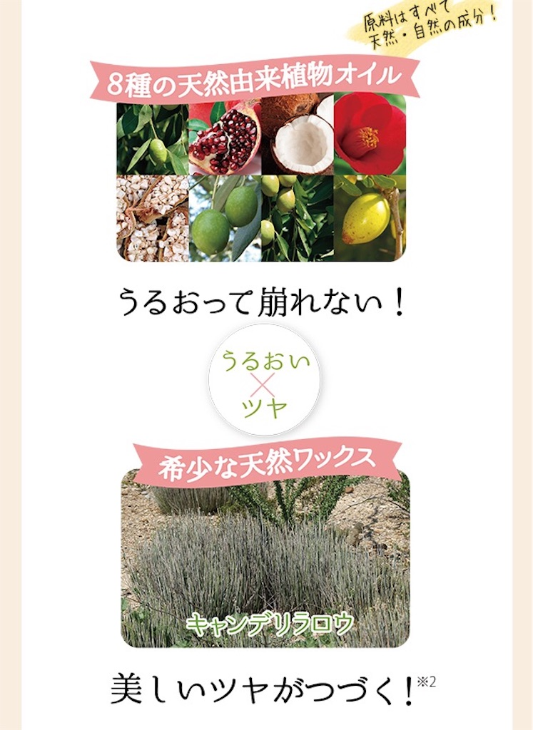 f:id:oninokonoko:20170617021432j:image