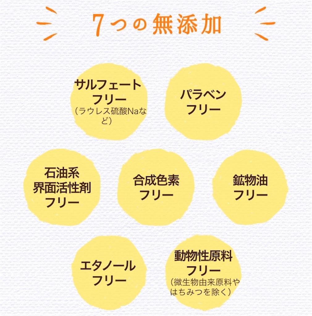 f:id:oninokonoko:20181201132129j:image