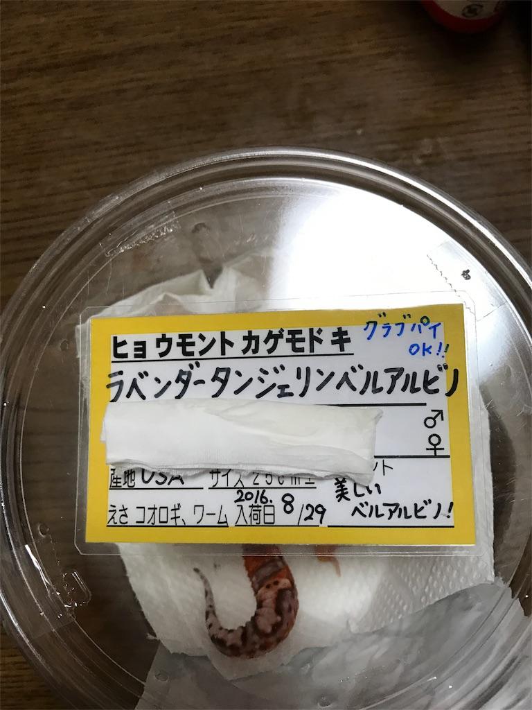f:id:onioto:20161204215720j:image