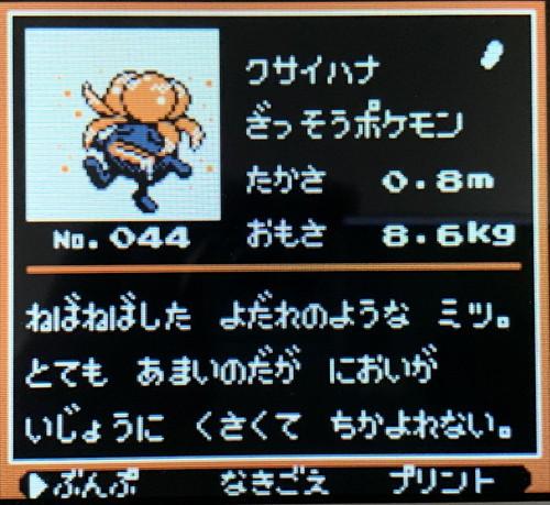 f:id:oniwa_hanauta:20190808085208j:plain