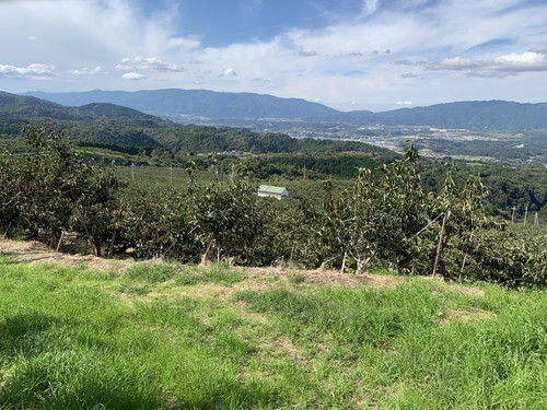 農園 風景1
