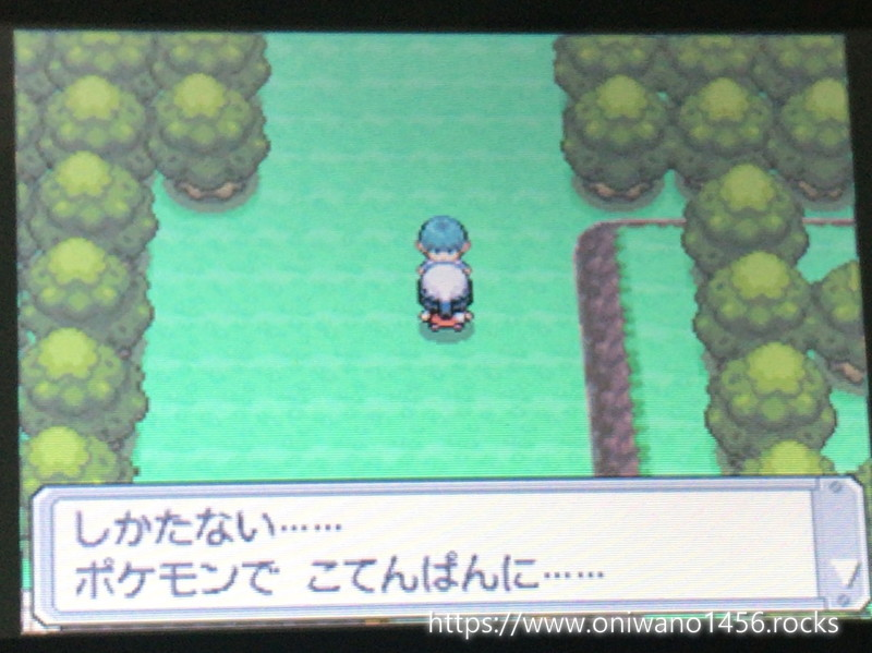 f:id:oniwano1456:20200724201347j:plain