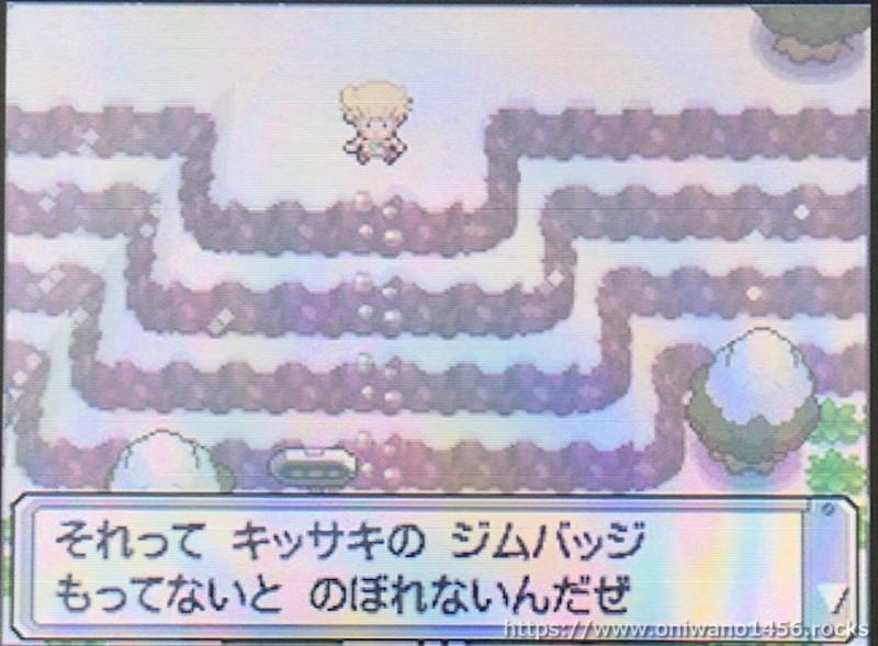 f:id:oniwano1456:20201004151912j:plain