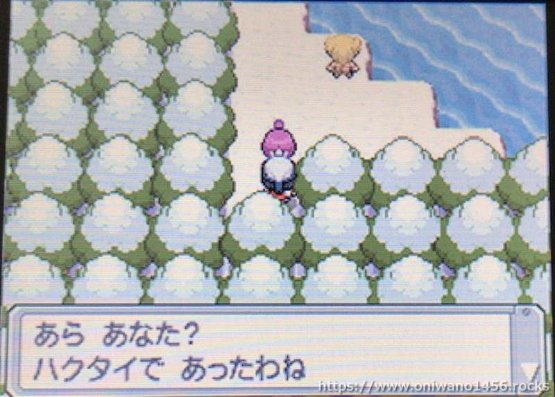 f:id:oniwano1456:20201004161319j:plain