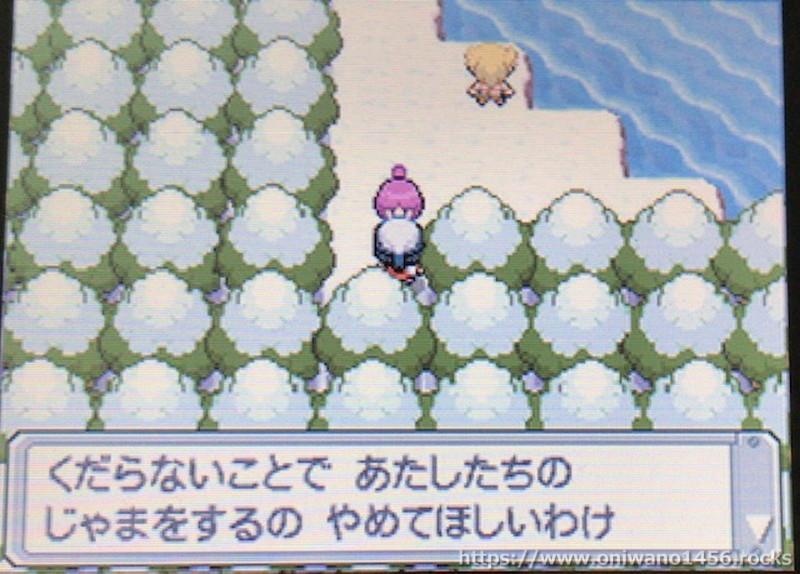 f:id:oniwano1456:20201004161419j:plain
