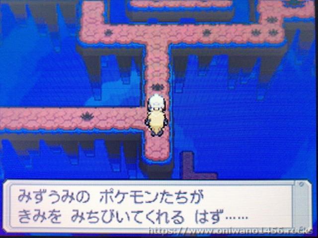 f:id:oniwano1456:20210121151133j:plain