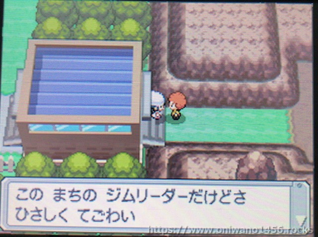 f:id:oniwano1456:20210122143846j:plain