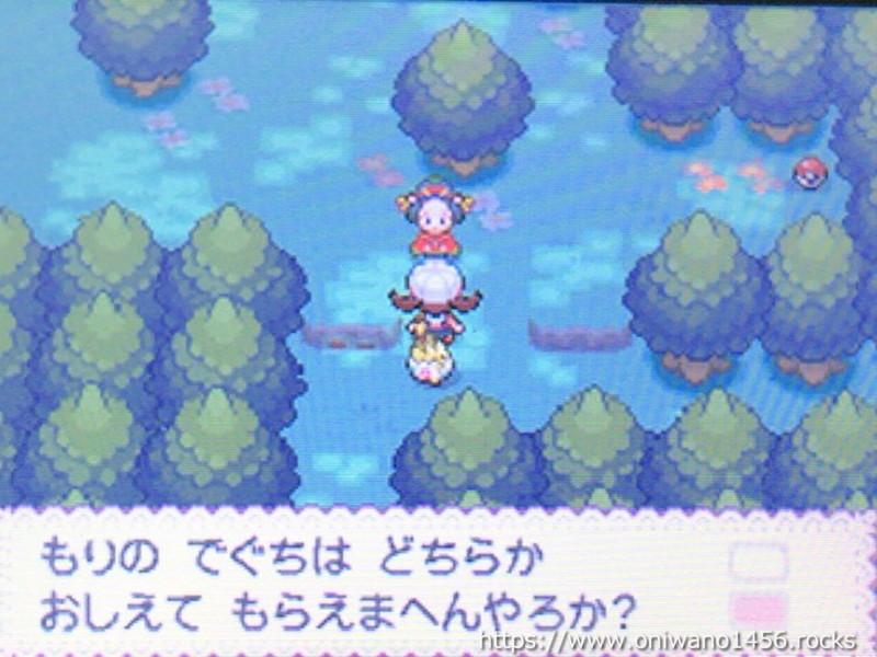 f:id:oniwano1456:20210415190223j:plain