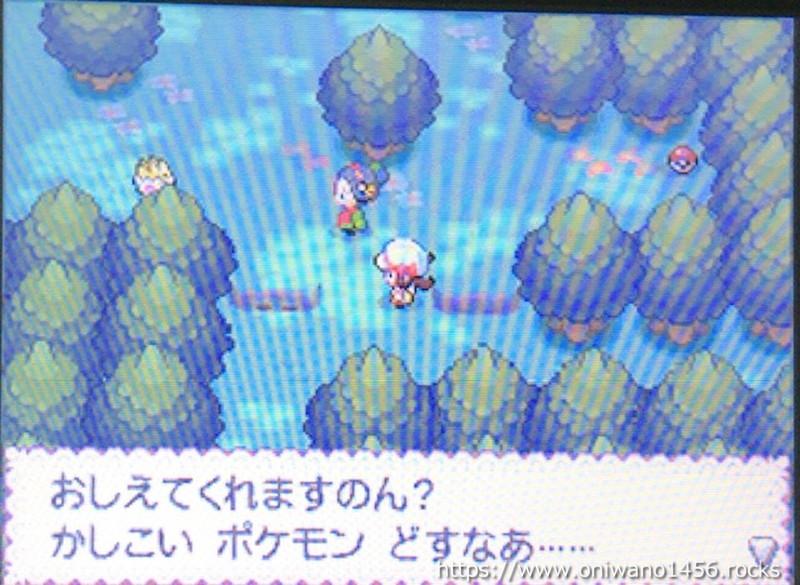 f:id:oniwano1456:20210415190238j:plain