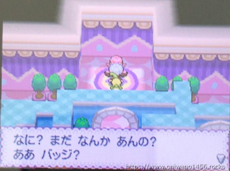 f:id:oniwano1456:20210415191632j:plain