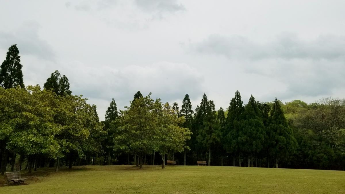 f:id:oniyome-okan:20200421163917j:plain