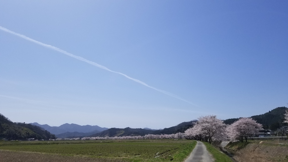 f:id:oniyome-okan:20210401110354j:plain
